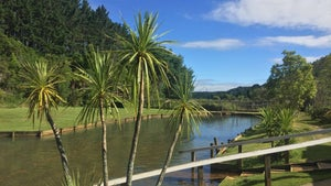 Why it doesn't have to be expensive to enjoy Rotorua