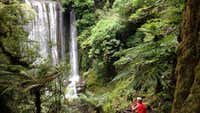 Bewitched by the mystical beauty of one of NZ's Great Walks