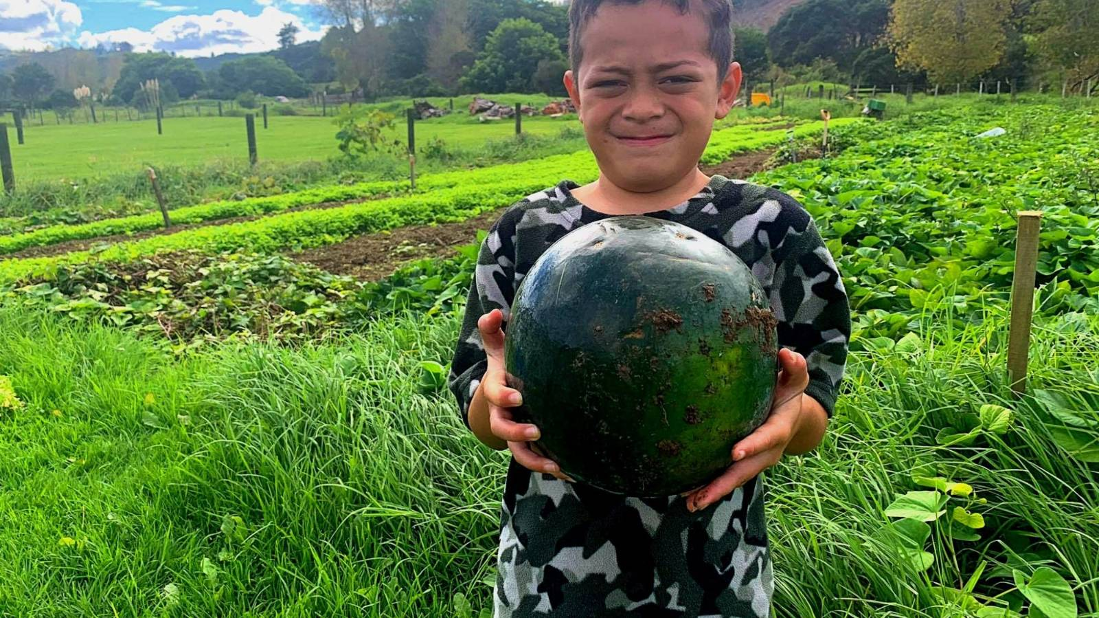 Kaitiakitanga & food forests: 'We can't just take'