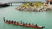 Where to experience Māori culture in Wellington