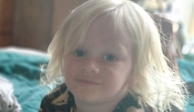 Community and police search for missing 4-year-old boy in Tolaga Bay