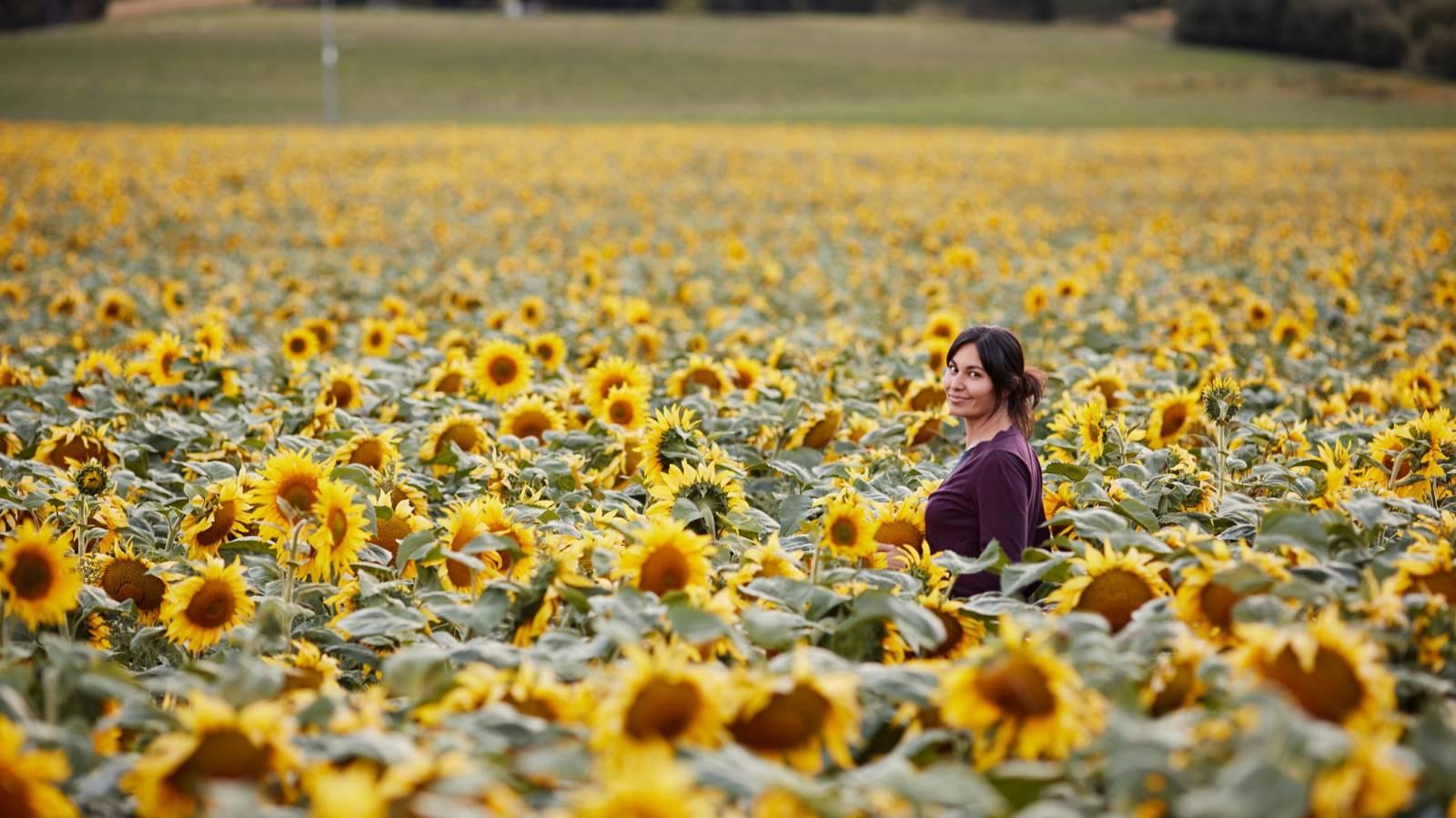 Nadia Lim: Why I planted 968,000 sunflowers