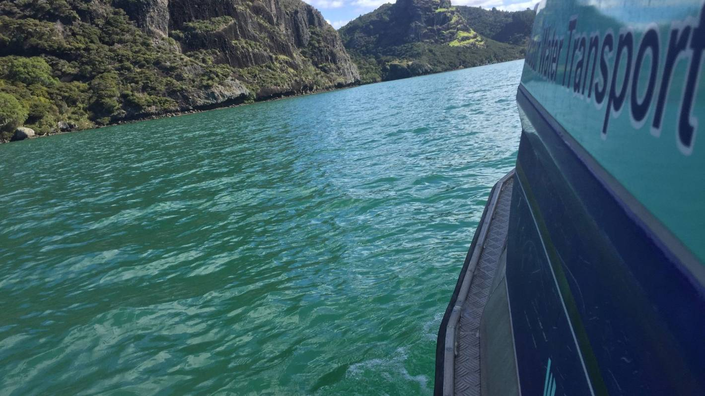 Postcards from Aotearoa: A Whangaroa Harbour tour that gets below the surface