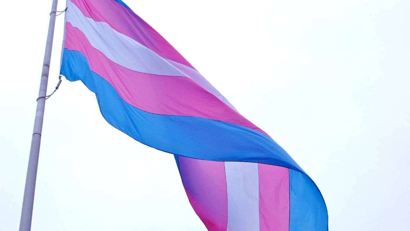 Florida makes transgender girls playing on school teams against the law - Stuff.co.nz
