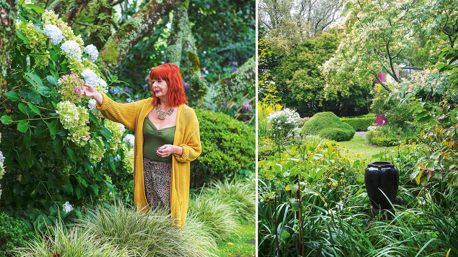 Vibrant Taranaki garden infused with colour and fun