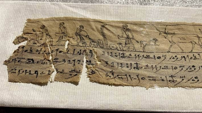 The ancient fragment includes images of life during the              Ptolemaic dynasty, about 2300 years ago.