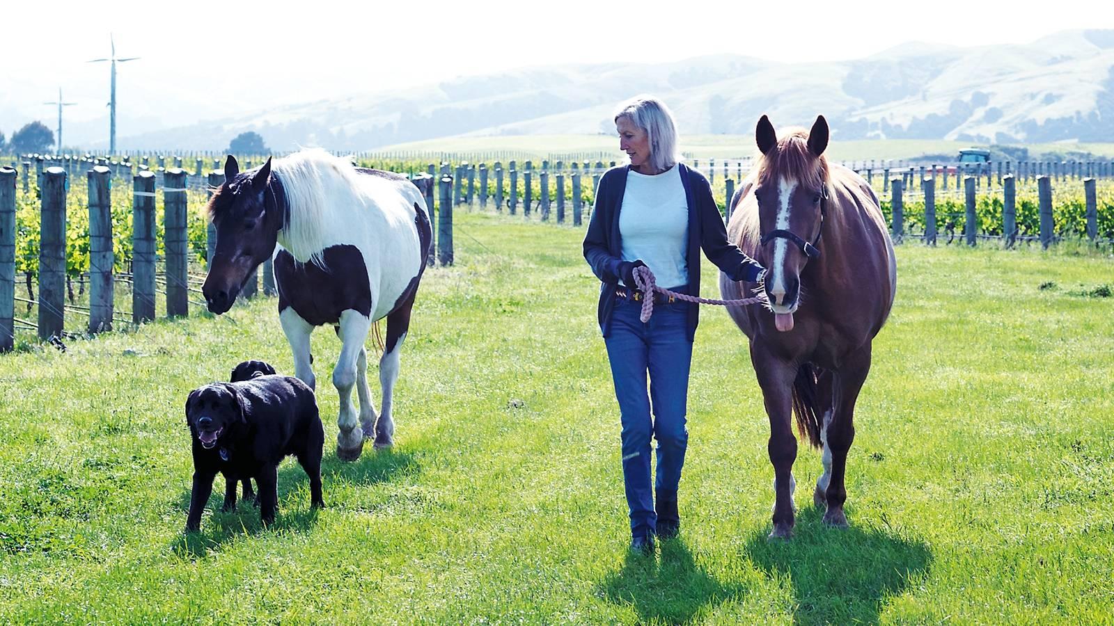 The couple living the good life on their Wairarapa vineyard