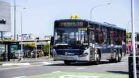 Auckland bus driver 'dragged' from seat and attacked