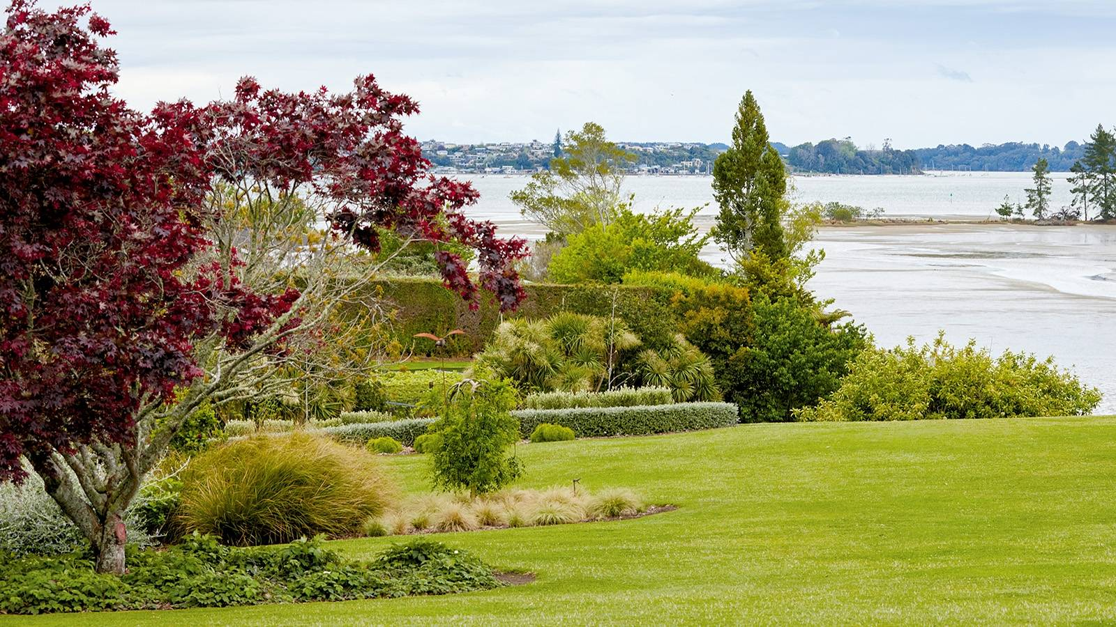 Coveted seaside Tauranga garden finally came this couple's way