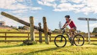 The cycle trail that's a journey into Te Ao Māori