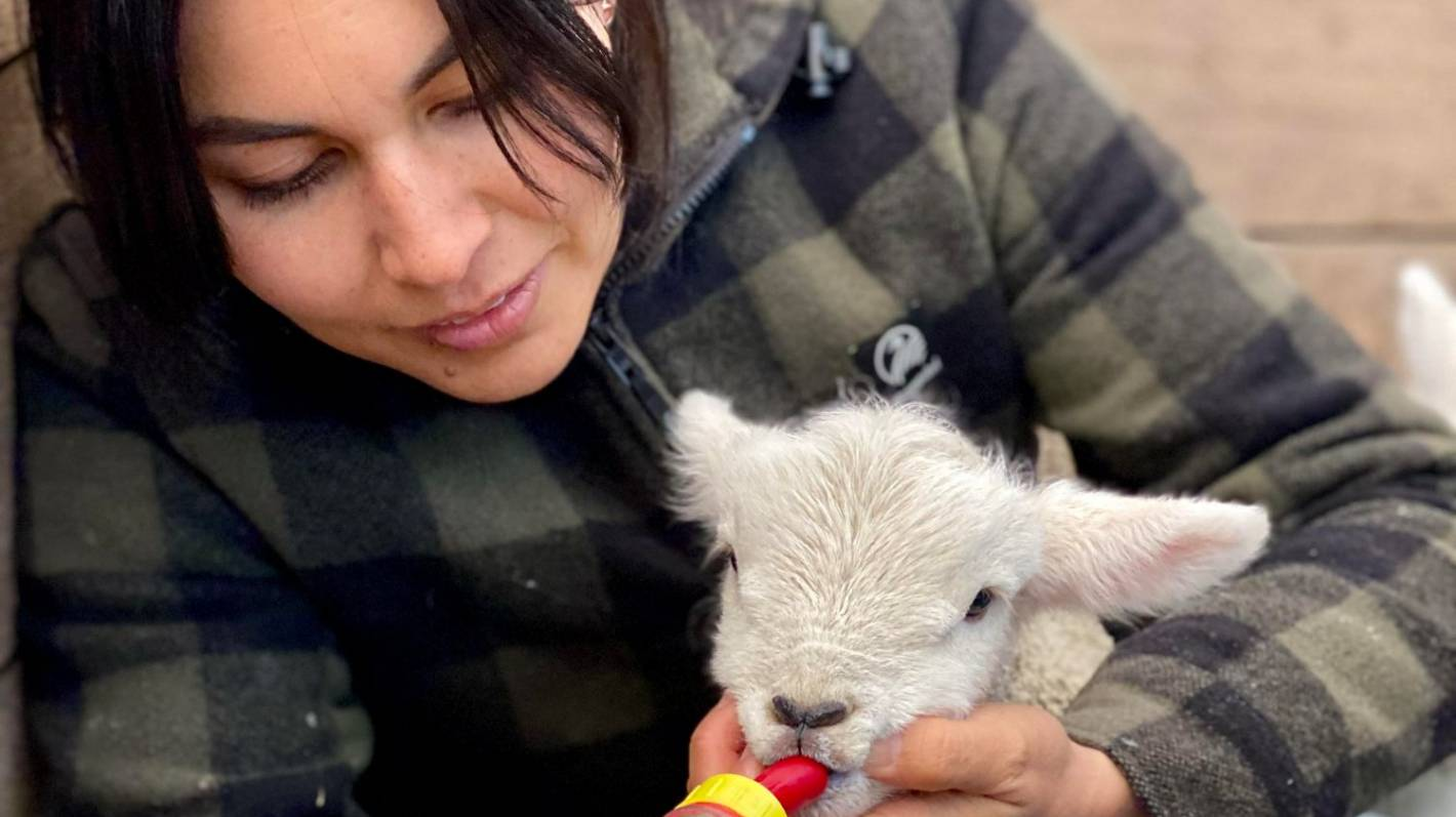 Nadia Lim: Blossom and babies make the season change soar