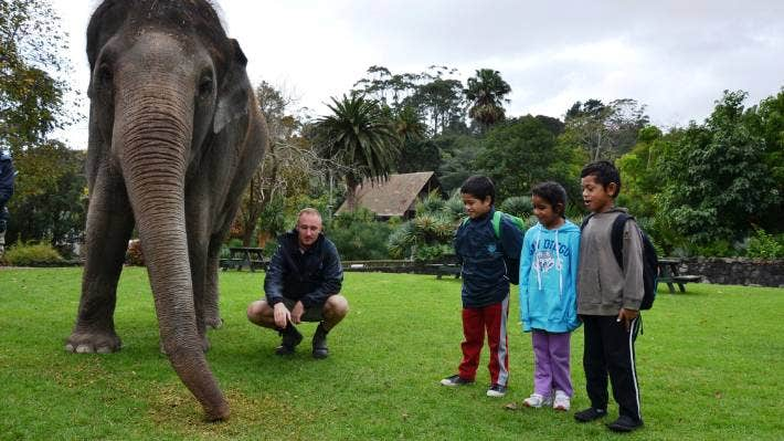 School visits like this one to Auckland Zoo provide rich learning experiences, says Khylee Quince.
