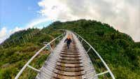 Exploring the North Island's forgotten rail trail