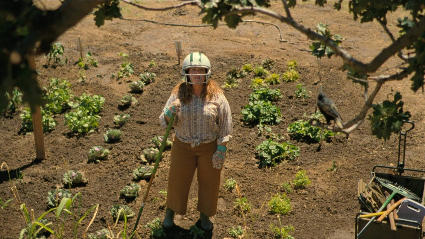 The Starling: Melissa McCarthy battles grief and an avian foe in Netflix dramedy - Stuff.co.nz