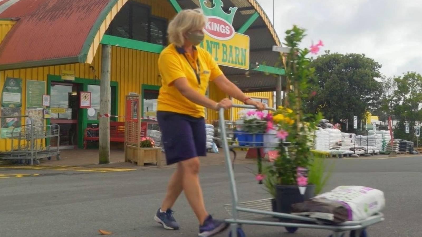 Auckland gardeners rush garden centres