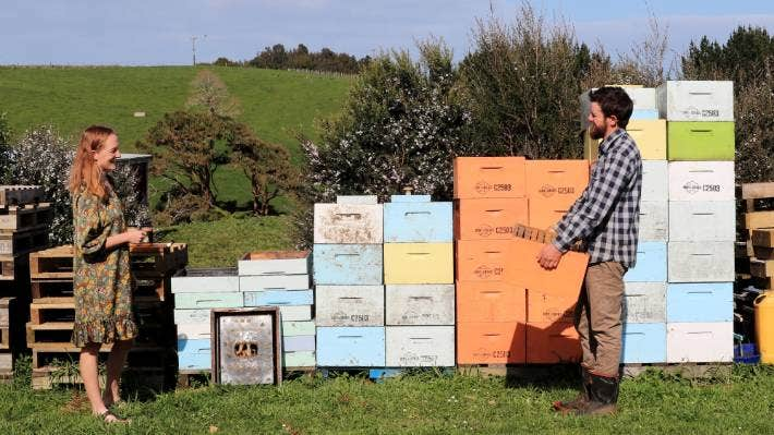 Hannah and Rory O'Brien run a sustainable honey business in Raglan.