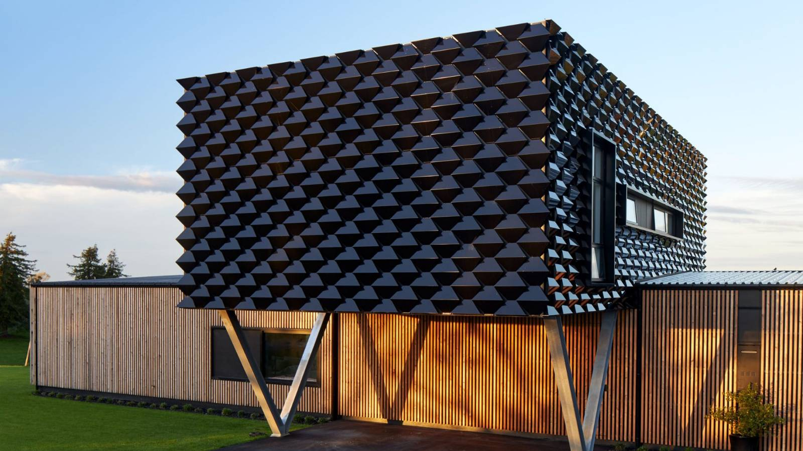 'Scaly skin' house wows in ADNZ awards