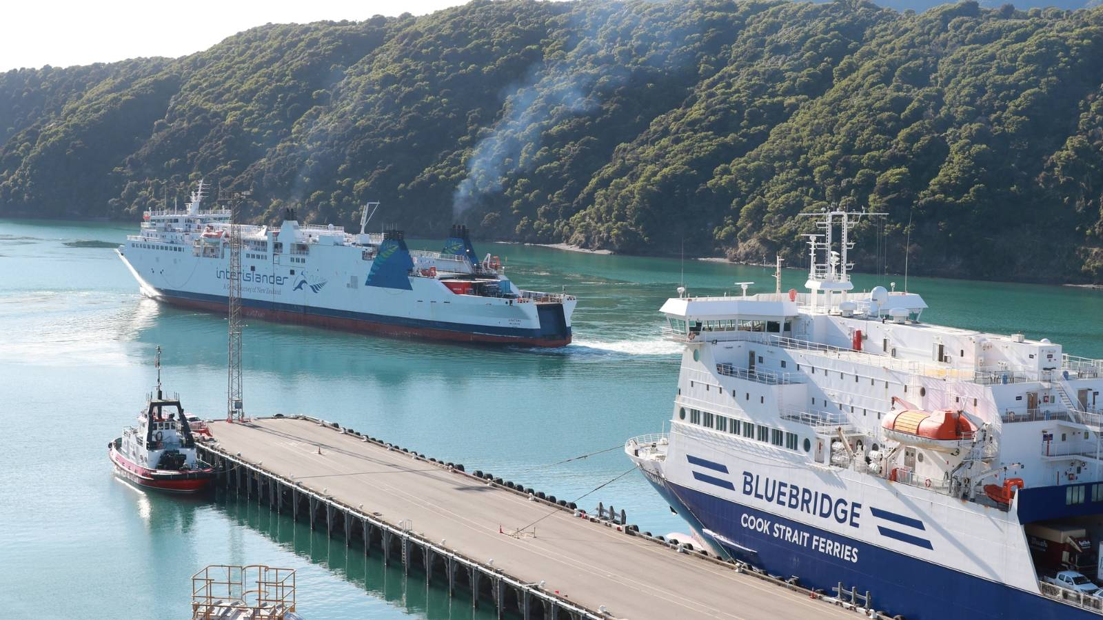 Call for pre-departure Covid tests for travel to South Island