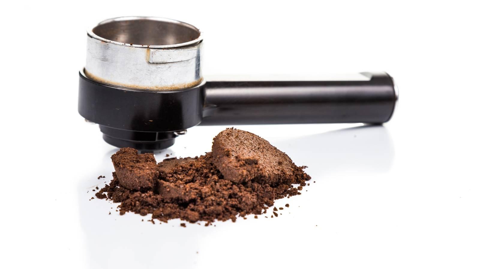 Coffee grounds: garden friend or plant killer?