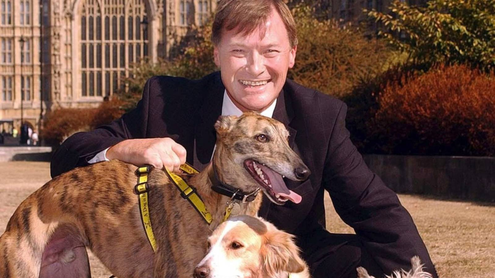 Stabbing death of UK MP David Amess declared a terrorist incident