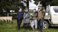 Daughter's food intolerance inspired sheep milking success