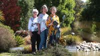 Country gardens set to charm in Wairau Valley tour
